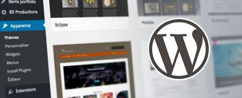 Formation Choisir et Personnaliser votre theme Wordpress